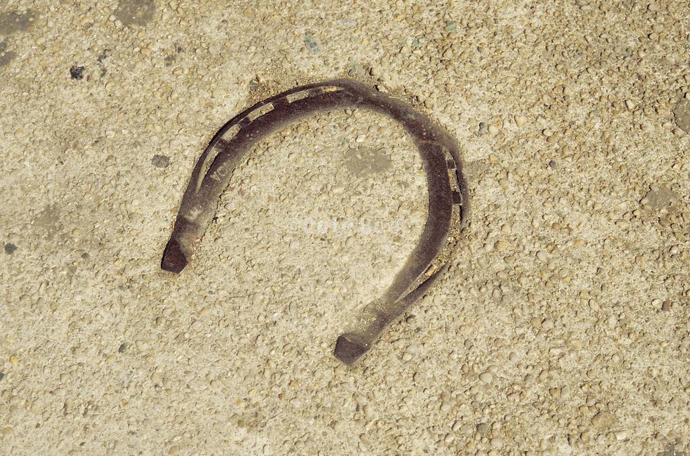 still life of horseshoe on ground