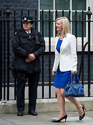 © Licensed to London News Pictures. 02/06/2015. Westminster, UK. Secretary of State for Environment, Food and Rural Affairs LIZZ TRUSS leaving Number 10 Downing Street in London following a cabinet meeting. Photo credit: Ben Cawthra/LNP