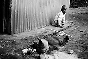 NAIROBI, KENYA – MARCH 9, 2010: An African child sits among chickens.