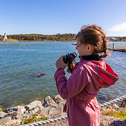 A young girl birdwatching  in Lubec, Maine. Lubec Narrows.