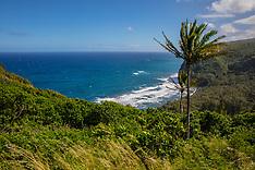 1229-1234 (All Hawaii)