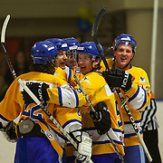 Southern Stampede players celebrate after scoring during the Southern Stampede V Canterbury Red Devils National Ice Hockey League matches at the Queenstown Ice Arena, Southern Stampede won both series games 5-3 and 5-2. Queenstown, South Island, New Zealand, 16th July 2011