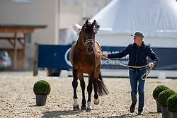SCHMIDT Hubertus (GER), Escolar<br /> Balve - Longines Optimum 2019<br /> Vet-Check Dressurpferde Deutsche Meisterschaft<br /> 13. Juni 2019<br /> © www.sportfotos-lafrentz.de/Stefan Lafrentz