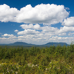 Cumulus clouds over an area on Lily Bay Mountian that has recently been logged.  Near Greenville, Maine.  Spencer Mountains.