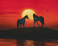 Two horses stand on a dune by the sea. It is sunset and the sky is turning red. A few seagulls cross the evening sky.This atmospheric work can be purchased in various materials and formats. –<br /> -<br /> BUY THIS PRINT AT<br /> <br /> FINE ART AMERICA / PIXELS<br /> ENGLISH<br /> https://janke.pixels.com/featured/two-horses-by-the-sea-jan-keteleer.html<br /> <br /> WADM / OH MY PRINTS<br /> DUTCH / FRENCH / GERMAN<br /> https://www.werkaandemuur.nl/nl/shopwerk/Twee-paarden-bij-de-zee/801618/132?mediumId=1&size=70x55<br /> –<br /> -
