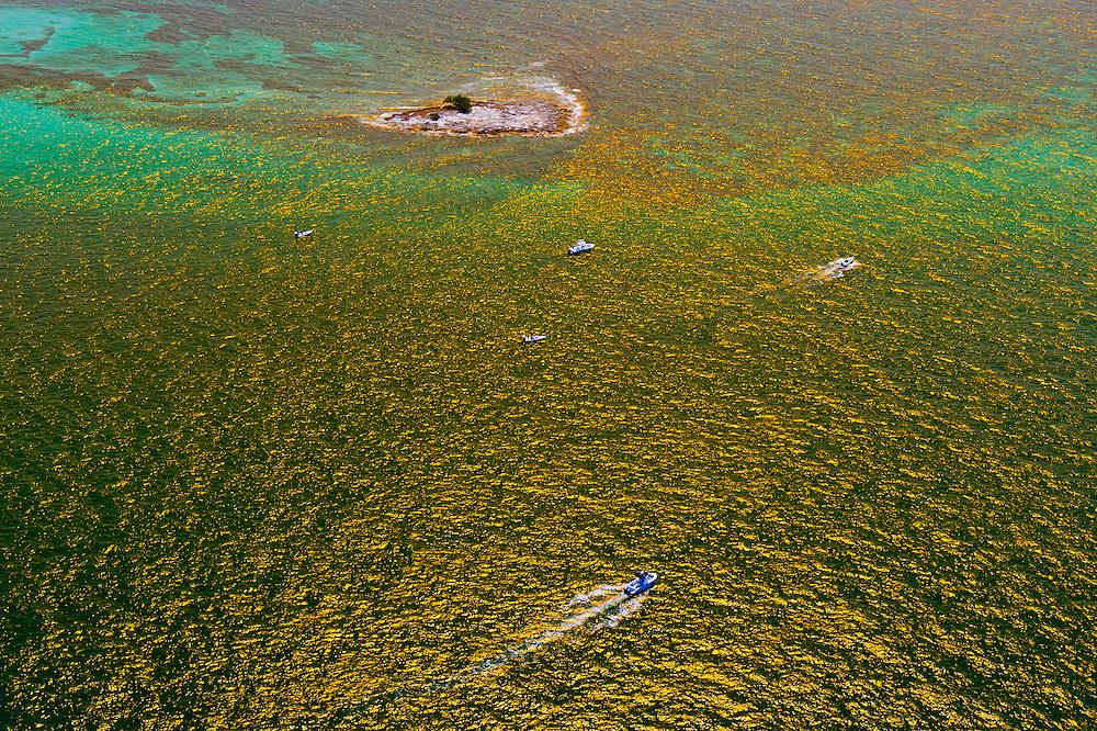 Aerial View of boats, Florida Keys, Florida USA