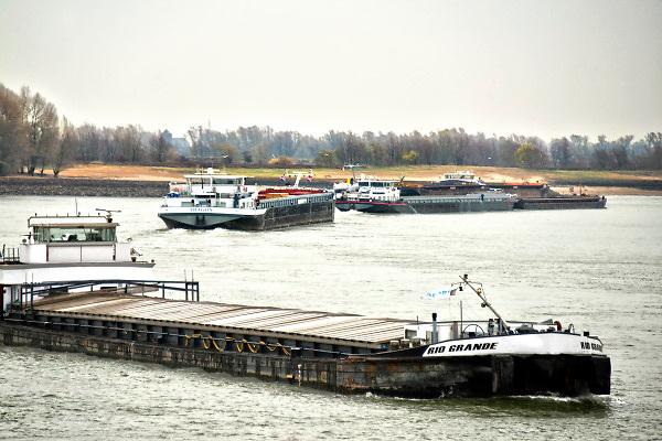 Nederland, the netherlands, Millingen, 29-11-2018 Nog nooit stond het water in de Waal zo laag . Binnenvaartschepen varen langs de oever en de ooijpolder. Door de aanhoudende droogte staat het water in de rijn, ijssel en waal extreem laag . Laagterecord en de laagste officiele stand ooit bij Lobith gemeten. Schepen moeten minder lading innemen om niet te diep te komen . Hierdoor is het drukker in de smallere vaargeul . Door te weinig regenval in het stroomgebied van de rijn is het de waterafvoer extreem weinig .  De Waal is het Nederlandse deel van de Rijn en de belangrijkste vaarroute van en naar Rotterdam en Duitsland . Aftakkingen zijn de minder bevaren Neder Rijn en IJssel. De levering, aanvoer van vracht, lading,grondstoffen, voor fabrieken en brandstof wordt problematisch.Foto: Flip Franssen