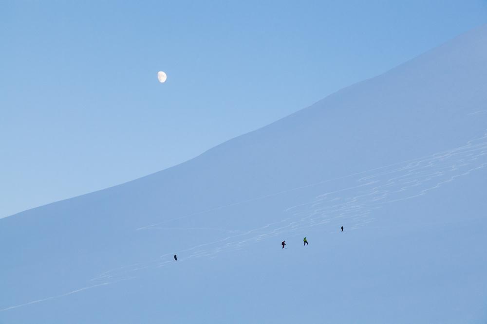 Anouk Vlug (l-r), Michelle Blade, Nate Stevens, and Kiya Riverman makes turns on Hallwylfjellet, Svalbard at dusk.
