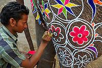 Inde, Rajasthan, Jaipur, peinture et decoration des elephants pour le festival des elephants. // India, Rajasthan, Jaipur, painting of the elephant for the elephant festival.