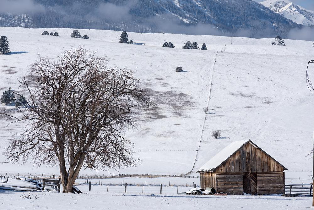 Old farm shed, Wallowa Valley, Oregon.
