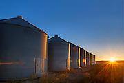 Grain bins at sunrise<br /> near Swift Current<br /> Saskatchewan<br /> Canada