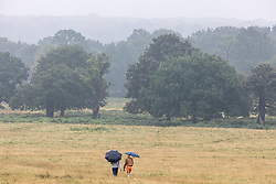 Licensed to London News Pictures. 14/09/2021. London, UK. Walkers brave the rain in Richmond Park south-west London as weather forecasters issue yellow weather warnings for heavy rain and thunderstorms for London and the South East today with the potential of flooding to homes and businesses and disruption to travel networks. However, sunny warm weather is expected from tomorrow with highs of 24c. Photo credit: Alex Lentati/LNP