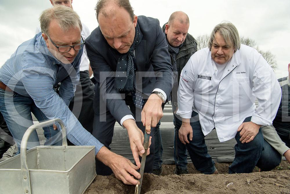 DIFFELEN - Eerste Asperge.<br /> Foto: Jan Nijenhuis (l) help burgemeester Peter Snijders de eerste asperge te steken, Jaap Istha (R) kijkt toe.<br /> FFU PRESS AGENCY COPYRIGHT FRANK UIJLENBROEK