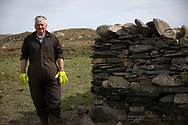 Crofter Dougie Reid working on a dry stone wall on the the Inner Hebridean island of Colonsay on Scotland's west coast.  The island is in the council area of Argyll and Bute and has an area of 4,074 hectares (15.7 sq mi). Aligned on a south-west to north-east axis, it measures 8 miles (13 km) in length and reaches 3 miles (4.8 km) at its widest point, in 2019 it had a permanent population of 136 adults and children.