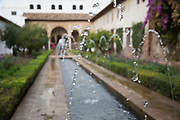 The Alhambra Palace and fortress complex located in Granada, Andalucia, Spain. Moorish designs and architecture in the beautiful Court of Water Channel (Patio de la Acequia) in the Generalife area. This area was built for the Granadian monarchs to escape their official routine.