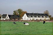 Nederland, Leuth, 6-11-2020 Aan de rand van dit kleine dorp in de ooijpolder bij Nijmegen in Gelderland zijn een aantal nieuwe huizen gebouwd in de sociale huursector . Hierdoor krijgen jonge starters uit het dorpje een kans op een woning .Foto: ANP/ Hollandse Hoogte/ Flip Franssen