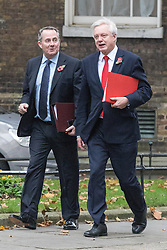 © Licensed to London News Pictures. 01/11/2016. London, UK. Secretary of State for International Trade Liam Fox (L) and Secretary of State for Exiting the European Union David Davis (R) walk together on Downing Street as they arrive for the weekly Cabinet meeting. Photo credit: Rob Pinney/LNP