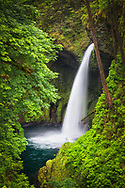 USA, Oregon, Hood River County. Metlako Falls on Eagle Creek in the Columbia River Gorge.