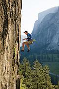 "Tom Addison falling from ""Tucker's Proud Rock Climb,"" 5.12b, Public Sanitation Wall, Yosemite Valley, California."