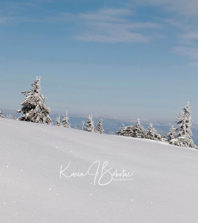 GSC Bib idea photos with Gunstock and Lake view.  ©2017 Karen Bobotas Photographer