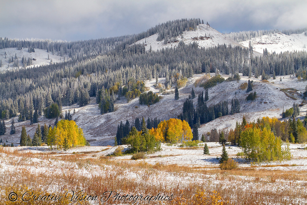 Early snowfall at  Rabbit Ears Pass near Steamboat Springs, CO