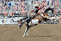 Bryan Martinat of Marsing, ID goes airborne during Sunday's Day of Champions saddle bronc finale at the California Rodeo Salinas.