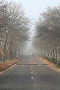 Rural road traffic on a Misty, foggy Morning