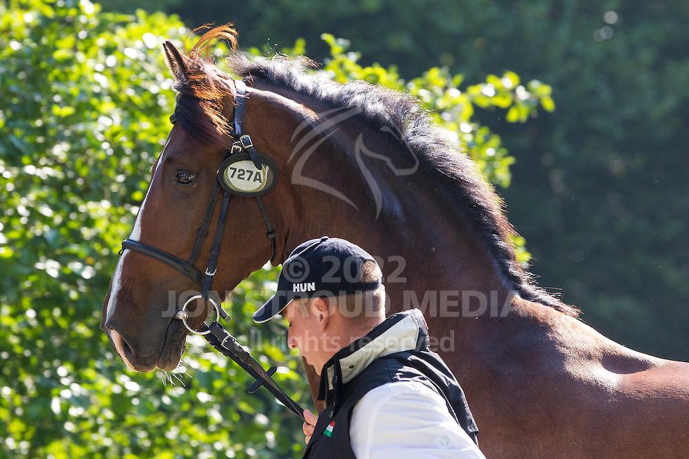 Jozsef Dobrovitz, (HUN), Amadeus, Carlo, Kinzhal, Torino, Waltstar - Horse Inspection Driving - Alltech FEI World Equestrian Games™ 2014 - Normandy, France.<br /> © Hippo Foto Team - Leanjo de Koster<br /> 25/06/14