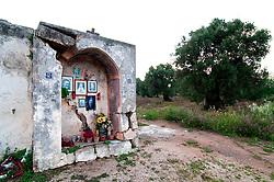 Leverano (LE) - All'uscita di Leverano, sul muro esterno di una masseria abbandonata c'è una cappelletta, una nicchia utilizzata ancora oggi per il culto (a giudicare dalla presenza di lumini e piante recenti). La cappella è attraversata da una crepa molto profonda.