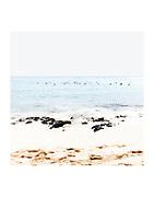 Hawaii beach seascape contemporary fine art photograph