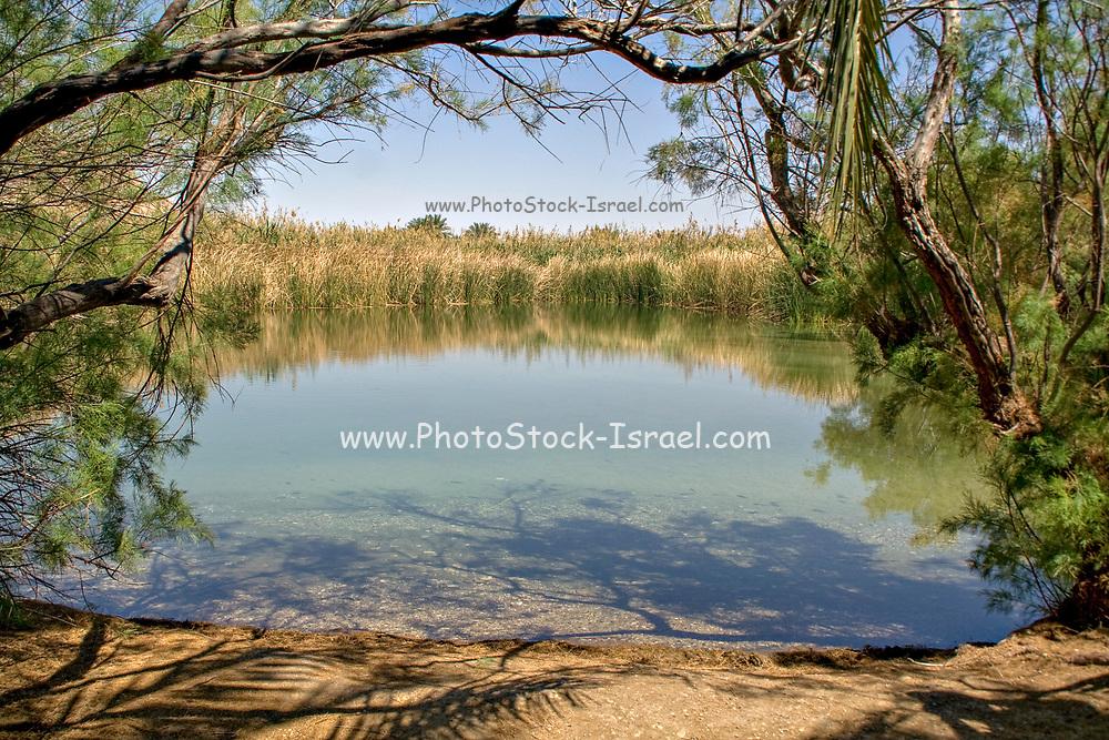Ein Tzurim natural spring, Gush Etzion, Israel