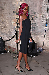 Leomie Anderson arriving at the Fabulous Fund Fair, Camden Roundhouse, London.<br />Photo credit should read: Doug Peters/EMPICS