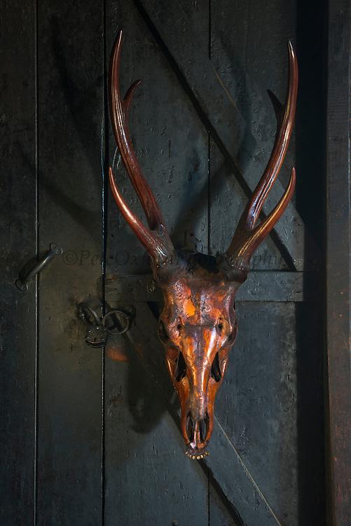 Ao Naga house with animal skulls<br /> Ao Naga Tribe<br /> Mokokchung district<br /> Nagaland,  ne India