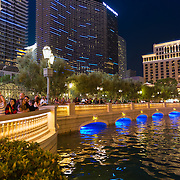 Bellagio Fountains Spectators