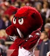 Nov 5, 2011; Fayetteville, AR, USA;  Arkansas Razorback mascot Big Red watches a game against the South Carolina Gamecocks at Donald W. Reynolds Stadium.  Mandatory Credit: Beth Hall-US PRESSWIRE