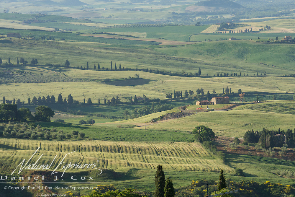 The rolling hills of Tuscany, iIaly