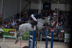 Van Mierlo Maikel (NED) - Johnny Boy<br /> KWPN Paardendagen - Ermelo 2012<br /> © Dirk Caremans