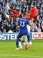 Football - 2018 / 2019 Premier League - Cardiff City vs. Fulham<br /> <br /> Marcus Bettinelli of Fulham & Callum Paterson of Cardiff City collide , at Cardiff City Stadium.<br /> <br /> COLORSPORT/WINSTON BYNORTH