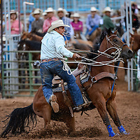 062014       Cable Hoover<br /> <br /> Calf roper Michael Bates leaps from the saddle as his horse dig into the dirt during the Lions Club Rodeo at Red Rock Park in Gallup Friday.