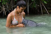 West Indian manatee (Trichechus manatus) <br /> Wildtracks<br /> Manatee Rehabilitation Center<br /> Sarteneja<br /> Belize,<br /> Central America<br /> & Nefi Veliz