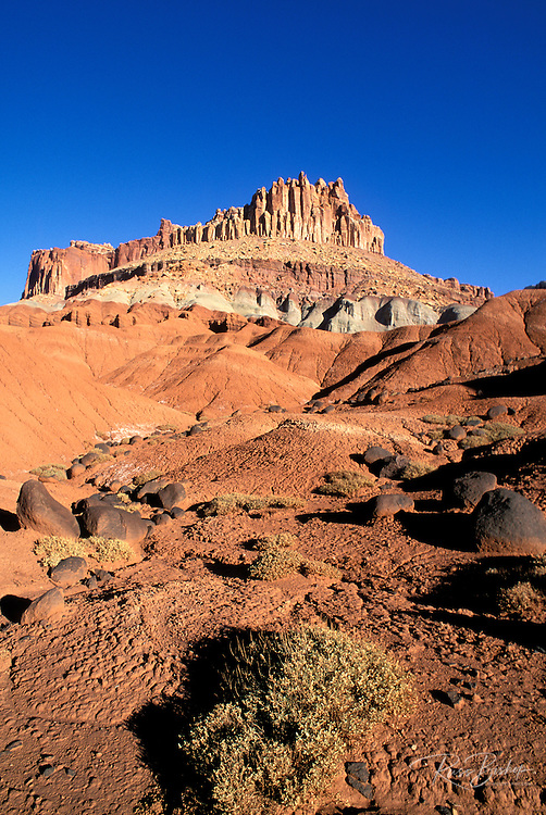 Morning light on volcanic boulders and sagebrush under the Castle, Waterpocket Fold near Fruita, Capitol Reef National Park, Utah