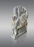 Hittite sphinx sculpture of one of the 4 sphinx's from the Sphinx gate of Hattusa, New Hittite Kingdom, 13th cent BC , Bogazkale archaeological Museum, Turkey. Against grey,