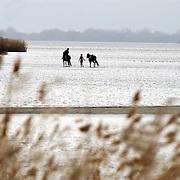 Kinderen wandelen met paarden door het Gooimeer over een zandbank thv Huizen.water, ondergaande zon, reflectie, ontspanning, paardrijden, water, zee, meer, eilandje, vogels,
