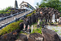 Vertical Garden at Ryukoin - a temple of the Shogin sect of Buddhism.  Its official name is: Rinkaizan Fukujuryuji Temple Ryukoin. The main deity is the eleven-faced Kannon Bodhisattva.  Ryukoin is not among the official 88 Shikoku henro pilgrimage but is rather a bangai fudosho affiliate temple closely associated with Kobo Daishi and the Shikoku Pilgrimage.  Significantly, is the place where Kobo Daishi  applied for the creation of the Shikoku Sacred Sites. The temple Is associated with the Date family the first lord of the Uwajima clan, and later merged with another temple to form Ryukoin. TodayRyukoin is listed as Bangai number  6 on the Shikoku Pilgrimage, thanks to it's close association to Kobo Daishi.