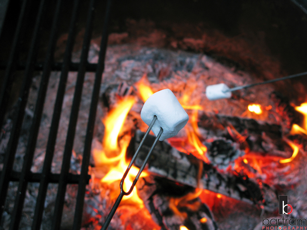 Marshmallows roast over a campfire at Calaveras Big Trees State Park near Arnold, California on Friday, June 6, 2008. (Photo by Kevin Bartram)