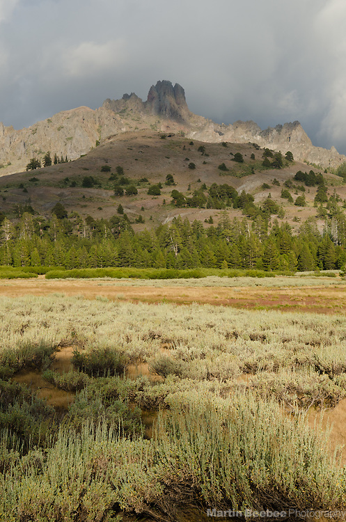 Mountains and storm clouds above Indian Valley, Sierra Nevada, Toiyabe National Forest, California