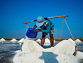 2019 Salt Harvest in Thailand