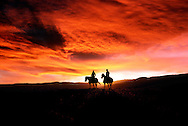 Couple Riding Horses, Yellowstone National Park, Model released, Sunset