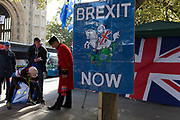 On the day that the EU in Brussels agreed in principle to extend Brexit until 31st January 2020 (aka 'Flextension') and not 31st October 2019, a Chelsea Pensioner sells Remembrance poppies, next to Brexit Party flags and banners during a Brexit protest outside parliament, on 28th October 2019, in Westminster, London, England.