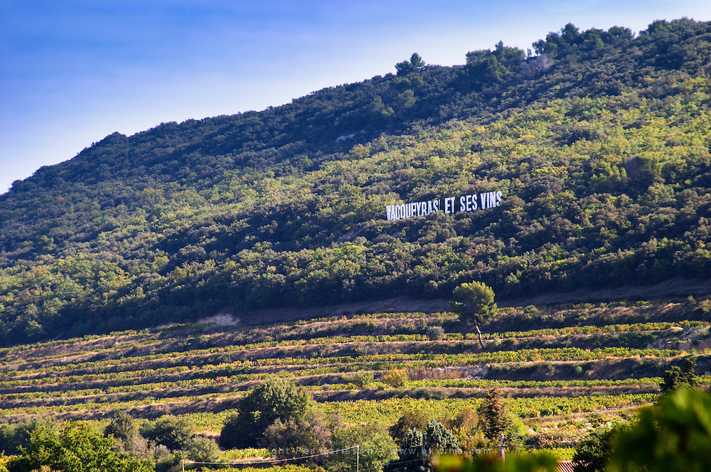 View over the Vacqueyras vineyards with a sign on the hillside inspired by the famous Hollywood sign. Domaine la Monardiere Monardière, Vacqueyras, Vaucluse, Provence, France, Europe